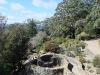 Country Charm bluemountains_mt-tomah-botanic-gardens